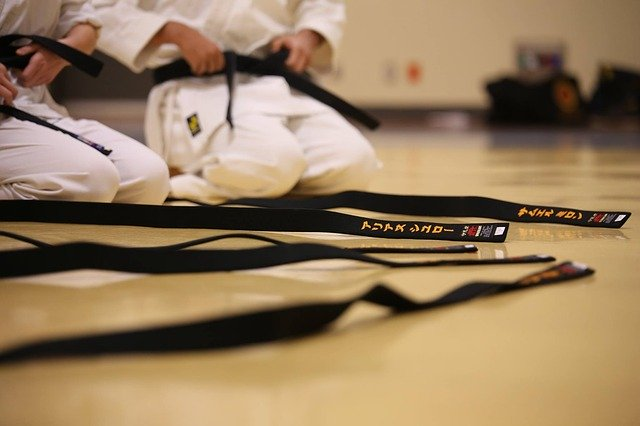 SVK-Karate Online-Training